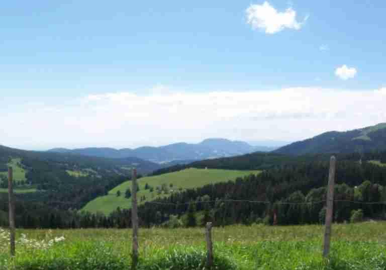http://www.eitljoergwein.at/data/image/thumpnail/image.php?image=172/eitljoerg_buschenschank_article_3334_1.jpg&width=768